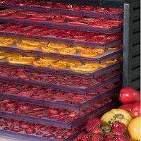 TODAS LAS RECETAS : Métodos caseros para deshidratar frutas y otros alimentos.
