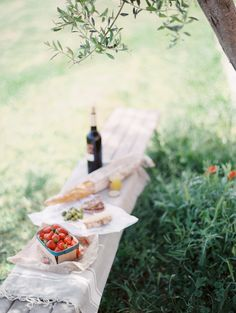 lunch under an olive tree...an Italian Picnic?
