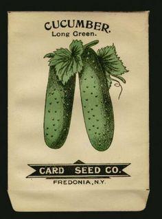 vintage cucumber - Hledat Googlem