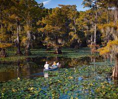 Caddo Lake: Texas and Louisiana