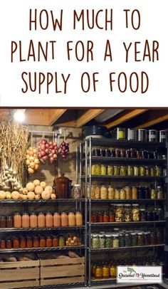 How Much to Plant for a Year's Supply of Food - The Seasonal Homestead