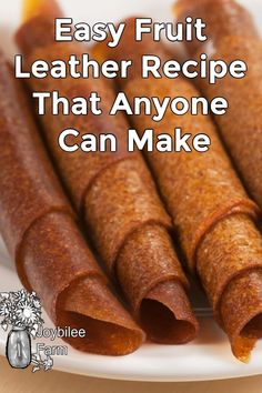 Easy Fruit Leather Recipe, Homemade Fruit Leather, Dehydrated Apples, Dehydrated Food, Fruit Roll Ups, Food Mills, Fruit Preserves, Apple Fruit, Dehydrator Recipes