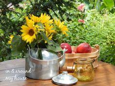 In & around my house Moscow Mule Mugs, My House, Tableware, Garden, Dinnerware, Garten, Tablewares, Lawn And Garden, Gardens