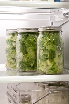 lettuce keeps for 7-9 days when stored in mason jars....Going to shred some lettuce heads tomorrow and give it a try!