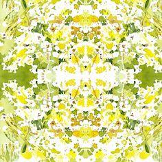 C'EST LA VIV™ Garden Lark Collection_YELLOW AND WHITE  fabric by cestlaviv on Spoonflower - custom fabric