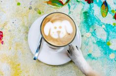 Perth is a city full of dog lovers and coffee addicts, so it's no wonder that plenty of our fave cafes don't mind if you bring your four legged friend along. We've found some of our favourite places who will give your pooch some love, throw in a doggy treat and maybe even make them famous on Instagram.  Here are 10 of our favourite dog-friendly cafes in Perth.