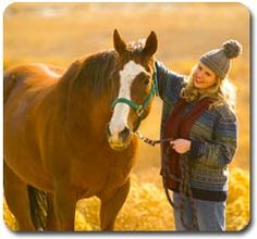 Horse Information on Breeding Horses, Equine Care, Training & More...