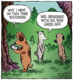 I obviously have a warped sense of humor. This is funny. Laugh Cartoon, Cute Cartoon, Cartoon Jokes, Cartoon Picture, Dog Comics, Funny Comics, Funny Dogs, Funny Animals, Funny Memes