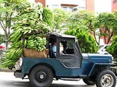Afbeeldingsresultaat voor fiestas de la cosecha pereira