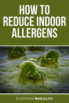 Eczema can be triggered by allergens and other irritants in your home. Here's how to reduce your exposure to dust mites, pet dander, and more.