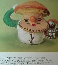 Mr mushroom goes mashrooming