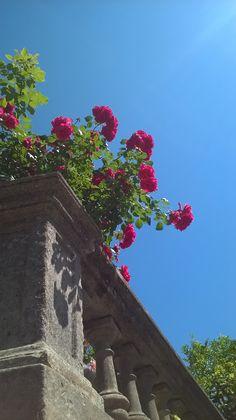 Cavtat Croatia, Boat Tours, Dubrovnik, Sidewalk, Side Walkway, Walkway, Walkways, Pavement