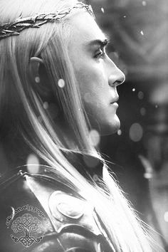 Thranduil, weighing his military options.