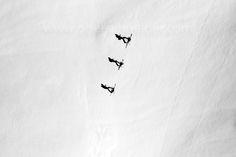 Pro Image, Online Shipping, Ski Touring, Aerial Images, Dji Phantom 4, Order Prints, My Images, Skiing, Photographers