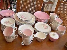 SWEET Vintage Retro Pink Bamboo Salem China Dinnerware Plate Set 75 pcs
