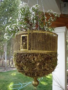 Upside Down Hanging Birdcage Planter: Filled with moss, short allysum, & trailing allysum, a pretty trailing yellow flower & hanging petunias / Created by Marilyn at The Cutest Cottage Lamps, etc