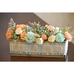 Live Succulent and Sola Flower Centerpiece or Gift Coral Peach Mint... ($55) ❤ liked on Polyvore featuring home, home decor, floral decor, floral arrangements, grey, home & living, home décor, coral centerpieces, flower stem and flower pots