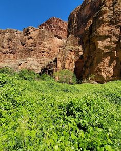 #Havasupai19 #HavasupaiFalls #VegasLocal #travel #travelblogger #getoutside #hike #adventure #backpacking #girlswhohike #girlswhobackpack #AZCulture #SouthwestGallery #Arizona #GrandCanyon #roadtrip #nature #BeaverFalls #HavasuFalls #MooneyFalls #Havasupai #Supai #GetOutdoors #backpack #camping #MyInspirationalPlace #waterfalls #chasingwaterfalls Havasupai Falls, Beaver Falls, Backpack Camping, Get Outdoors, Get Outside, Waterfalls, Backpacking, Grand Canyon, Mount Rushmore