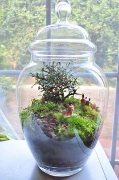 Mini ecosystem with succulents. Mason jars, cloche, vintage glass baby bottles are perfect to create a serene tablescape.