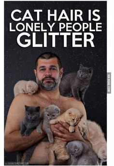 Kittens are cute. Kittendales Hot funny kinky sometimes awkward but always hilarious and touching collection of hansom boys and cute kittens boys cats memes Haha Funny, Funny Cats, Funny Animals, Hilarious, Fun Funny, Funny Stuff, Crazy Cat Lady, Crazy Cats, Bad Cats