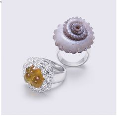 ring.surf gems~ Fulvio Bonavia