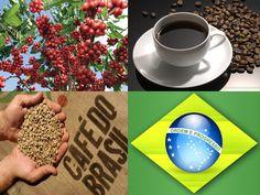 Café - Brasil
