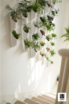 Story Of Green Plants Design On One Wall - Page 14 of 40 - Lily Fashion Style Indoor Plant Wall, Indoor Garden, Indoor Plants, Wall Hanging Plants Indoor, Plant Wall Diy, Diy Wall Planter, Snake Plant, Plant Design, Green Plants