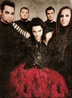 "$7.99 AUD - 37 Evanescence - Rock Band Music Star Amy Lee 14""X19"" Poster #ebay #Collectibles"