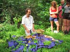 A foraging tour in Asheville, N.C.
