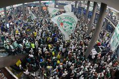 6b235e0481 Torcida faz festa impressionante em embarque do Palmeiras em Congonhas Você  É Minha Vida