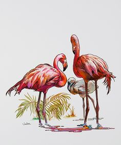 Flamingo Family (Julie Bell)