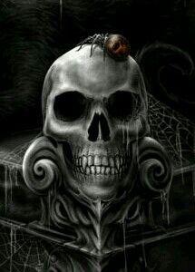 Skulls and Skeletons: Skull and Spider.
