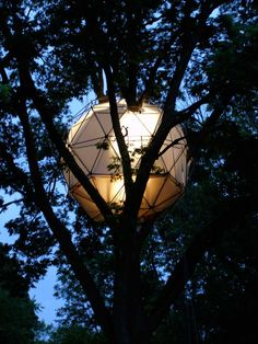 o2 treehouse - Google Search
