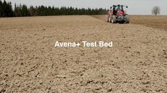 Avena+ Test Bed — Process — Agricultural Printing and Altered Landscapes. Avena+ Test Bed explores the relationship between landscape, agric...