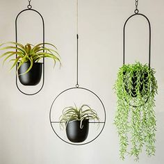 RISEON Boho Black Metal Plant Hanger,Metal Wall and Ceiling Hanging Planter, Modern Planter, Mid Century Flower Pot Plant Holder, Minimalist Planter for Indoor Outdoor Home Decor (Style A) Metal Plant Hangers, Ceiling Hanging, Plant Decor, Plant Wall, Flower Pot Holder, Plant Stand, Plant Holders, Metal Hanging Planters, Home Decor Styles
