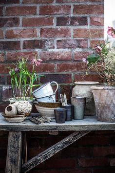 Gardening by Johanna Bradford and Kristin Lagerqvist – Lovely Life