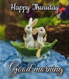 Miniature Rabbits, Miniature Fairy Gardens, Good Morning Picture, Morning Pictures, Morning Pics, Thursday Morning, Morning Images, Morning Quotes, Wednesday