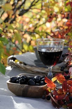 wine touring/tasting during the crush in Autumn.