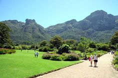 Take a walk or have a picinic in the Kirstenbosch Botanical Gardens. If you are visiting Cape Town between November and April, be sure to go and see one of the Summer Sunset Concerts.