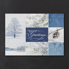 Winter Collage Nature Christmas Cards http://partyblock.carlsoncraft.com/Holiday/Shop-All-Holiday-Cards/YM-YMM0869-Winter-Collage--Holiday-Card.pro