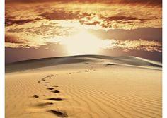 Los exhorto a caminar en esperanza y con empeño en este camino de amor, que Dios nos propone, dijo el Papa sobre la Cuaresma - Radio Vaticano