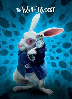 alice in wonderland characters | Character Posters - Alice in Wonderland (2010) Photo (10248157 ...