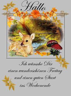 Friday Pictures, Good Morning Sunshine, Good Night, Happy Birthday, Teddy Bear, Animals, Germany, Tags, Good Friday