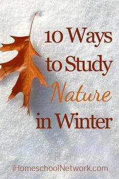 10 Ways to Study Nature in Winter | @iHomeschoolNet | #ihsnet