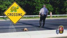 Fairfax County Police Department www.facebook.com