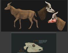 "Check out new work on my @Behance portfolio: ""Animals Anatomy"" http://be.net/gallery/31177013/Animals-Anatomy"