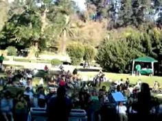 Joakin Bello-Prelude for a Sleeping Muse - YouTube Bellisima, Chile, Muse, Dolores Park, Youtube, Travel, Viajes, Chili, Trips