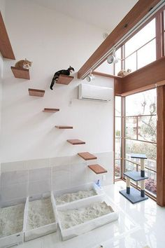 cat room a minimalist cat climber with several platforms, a cat scratcher and several litter boxes for kitties Animal Room, Cat Tree Designs, Cat Climber, Cat Hotel, Diy Cat Tree, Cat Playground, Playground Design, Cat Towers, Cat Shelves