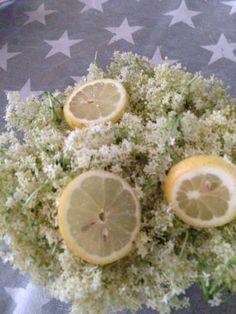 Holunderblütensirup ohne Konservierungsstoffe, Tutorial auf unserem Blog