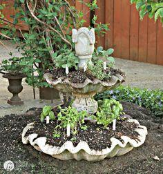 10 Plants to Keep Mosquitos Away Planting an Herb Garden Diy Herb Garden, Diy Garden Decor, Vegetable Garden, Diy Decoration, Garden Care, Citronella, Organic Gardening, Gardening Tips, Pallet Gardening